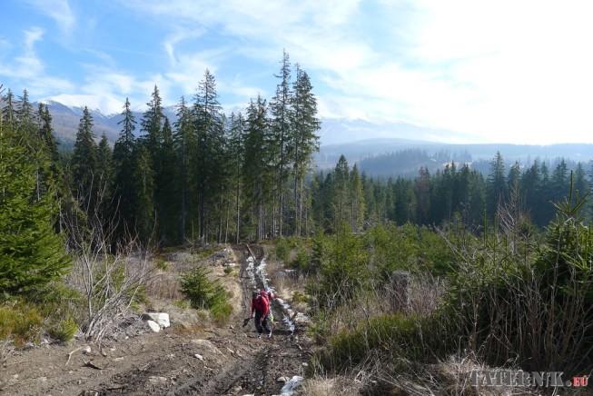 Dolina Kamienista (2)